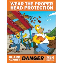 Wear the proper head protection