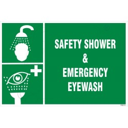 Safety shower and emergency eye wash