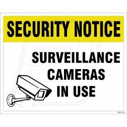 Surveillance Cameras In Use