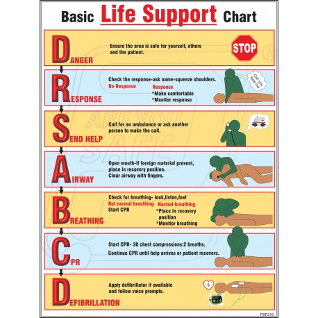 Basic Life Support Chart in Ahmedabad Gujarat | Protector ...