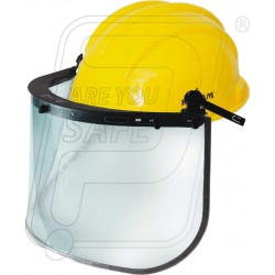 Face Shield ES 51 With PN 521 Helmet Karam